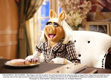 The_Muppets_13088765342185