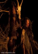 lords of salem 11