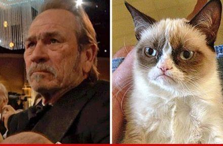 grumpy cat tommy lee