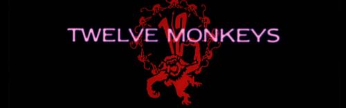 12-monos