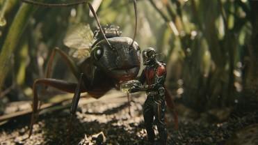ant-man-5