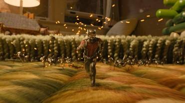 ant-man-8