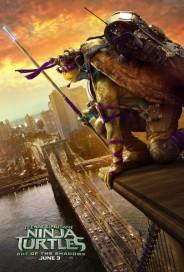 tortugas-3